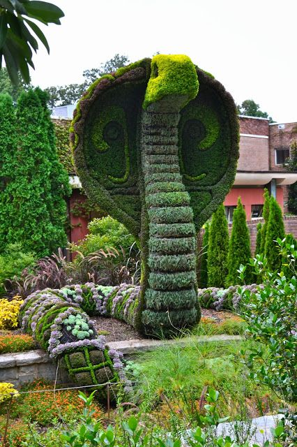 15 Diy Topiary Ideas For Every Garden and Gardeners