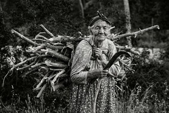 сбор валежника: 11 тыс изображений найдено в Яндекс.Картинках
