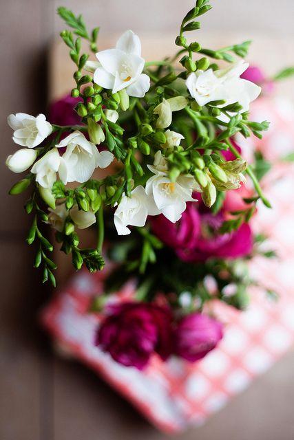 freesia, my favorite flowers #freesia #fresia #bloemen #flower