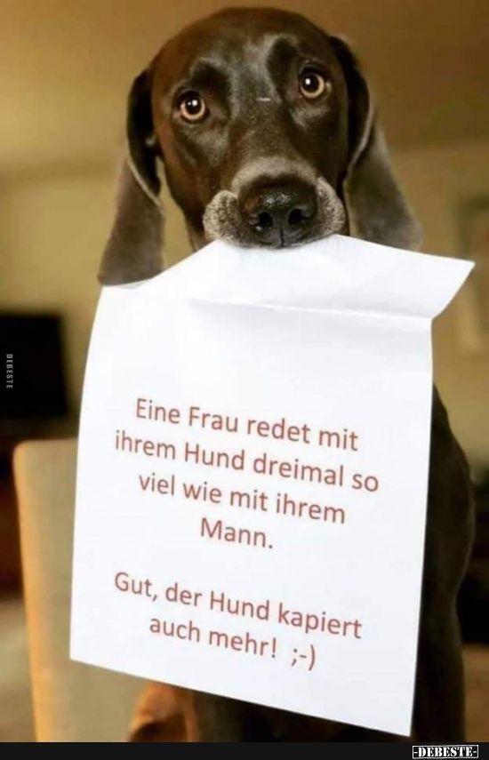 Eine Frau Redet Mit Ihrem Hund Dreimal So Viel Lustige Bilder Spruche Wit Fiora Pinthouse In 2020 Hund Witze Coole Spruche Lustige Bilder