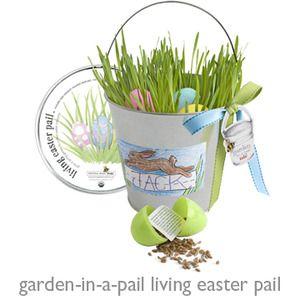 Kids Living Easter pail: $28. #Easter