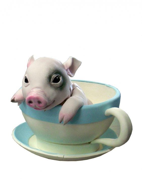 Tea Cup Pig cake