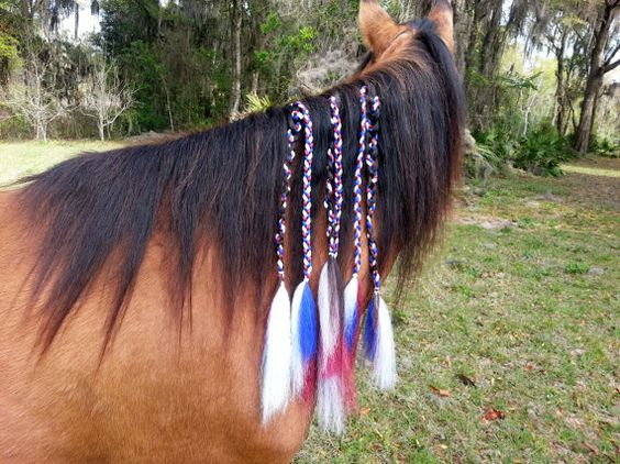 pin de marta brico en peinados de caballos | pinterest | caballos