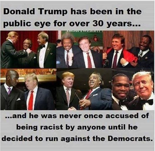 Vote Trump. Silence the Real Racists #americafirst