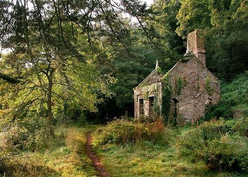 Stone cottage at the edge of the forest.