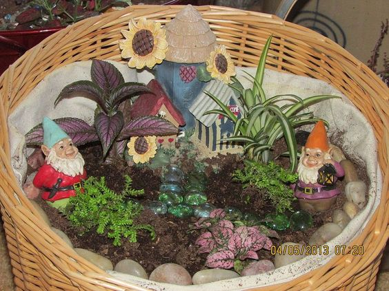 Still snow on the ground here in Wisconsin, so I have brought gardening inside.
