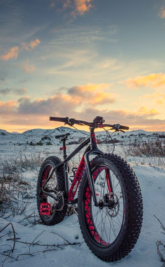 Specialized Fatboy--Have you tried Fatbiking in Crested Butte?  Host of the inaugural Fat Bike Worlds Championship in 2016, Crested Butte is definitely the place to give fatbiking a try!