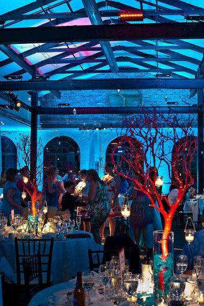 How much fun is this? Underwater-type feel, with blue everywhere, and subtle touches of lighting on the table, and then striking red centerpieces. Rad    Reception Decor Ideas Wedding Reception Photos on WeddingWire