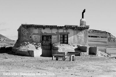 Antigua casa de pastores / An old shepher's hut | Bardenas Reales de Navarra