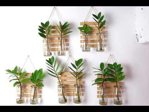 Zz Plant Zanzibar Gem Clear Glass Vase Wall Hanging Planters And Decor For Indoor Youtube In 2020 Plant Wall Decor Hanging Plant Wall Plant In Glass