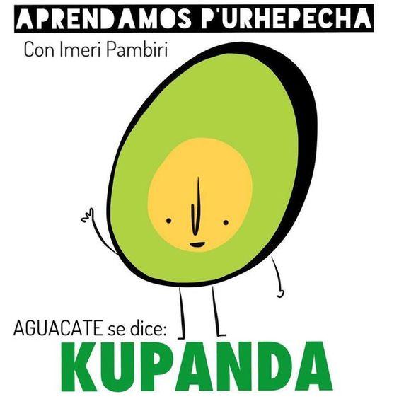 """Aguacate en purepecha """"kupanda"""""""