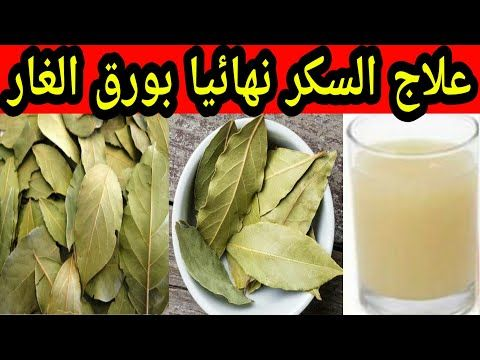 فوائد واستخدامات ورق الغار الجزء الثاني Benefits And Uses Of Bay Laure Plant Leaves Remedies Plants