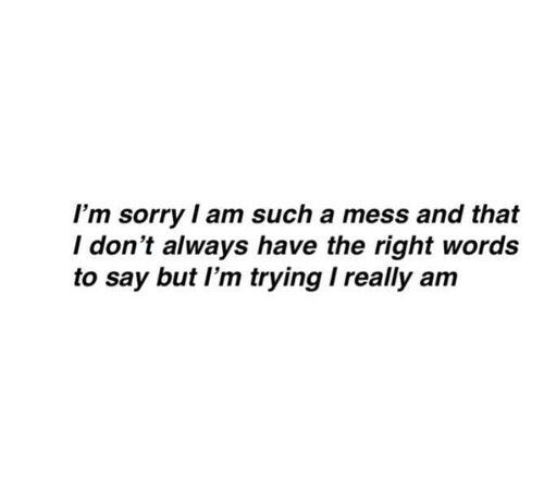 I'm sorry I'm such a mess..