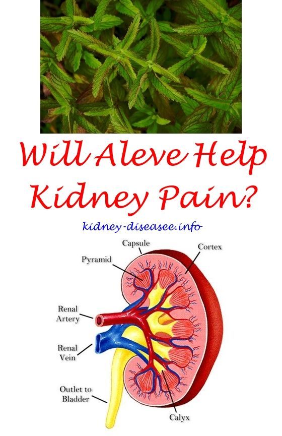 Acute Kidney Disease Kidney Disease Diet Chronic Renal Disease Renal Disease