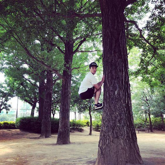 木に掴まるおばたのお兄さん