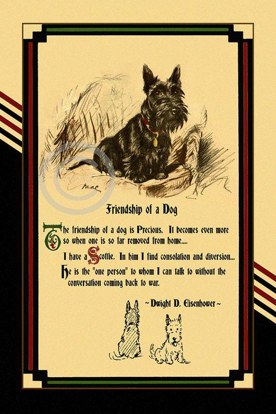 Wonderful Vintage Dog Motto Friendship of a by DragonflyMeadowsArt