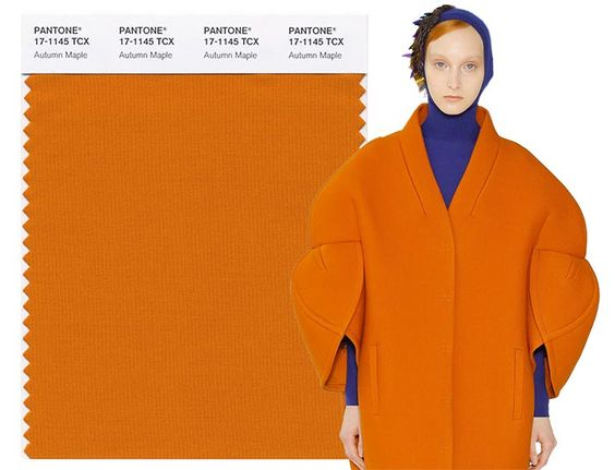 Fall/ Winter 2017-2018 Pantone Colors: Autumn Maple