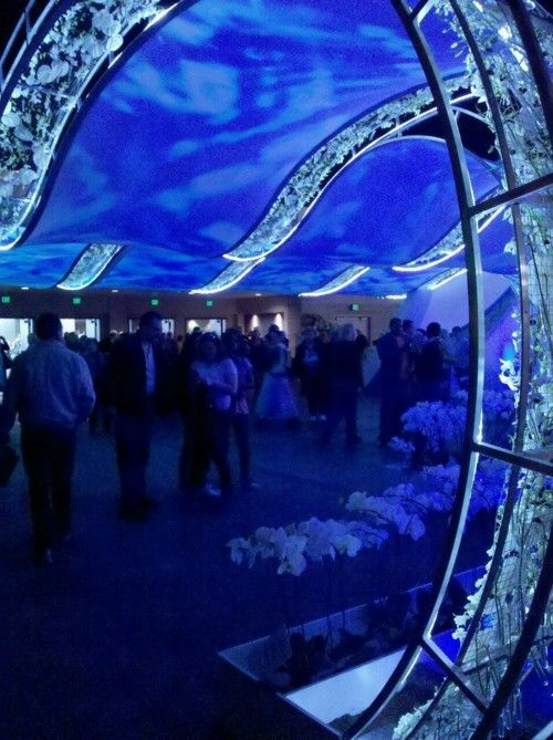 From the Philadelphia Flower Show...the giant wave of light, sound and orchids via designer Danilo Maffei