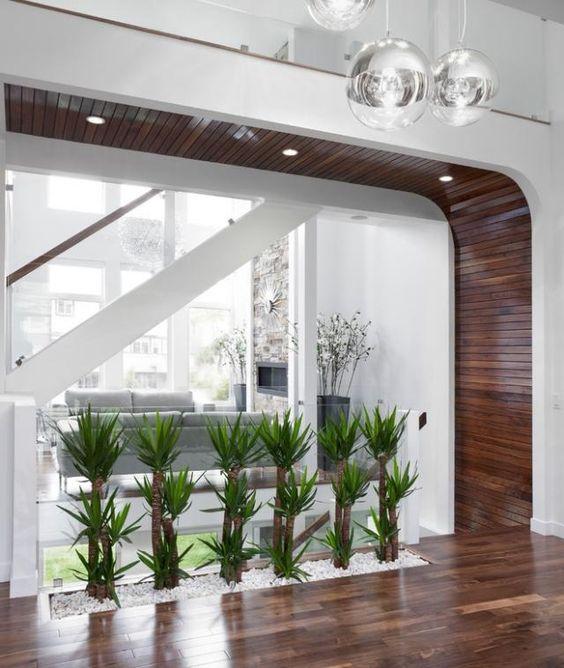 pflanzen Deko ideen flur modernes haus kies weiß glas wand palmen