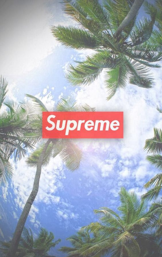 Supreme Floral Wallpaper Desktop Is Cool Wallpapers Supreme Wallpaper Supreme Iphone Wallpaper Supreme Wallpaper Hd