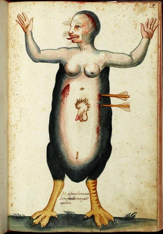 Hermaphrodite (Ulisse Aldrovandi, Monstrorum Historia)
