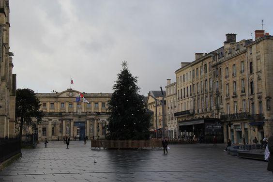 Новогоднее дерево, на фоне мэрии Бордо