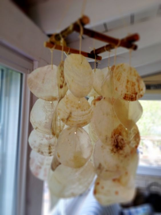 Seashell wind chime decoration art crafts pinterest for Shell wind chimes diy