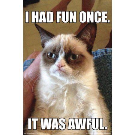 Grumpy Cat Fun Walmart Com In 2021 Grumpy Cat Birthday Funny Grumpy Cat Memes Grumpy Cat