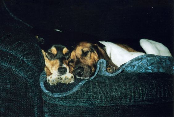 Bailey and Jake - January 2005