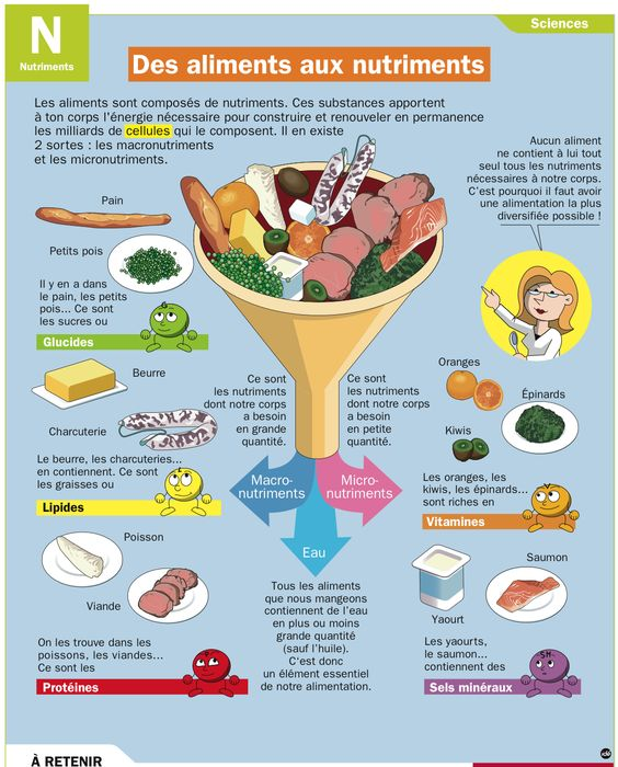 Fiche exposés : Des aliments aux nutriments