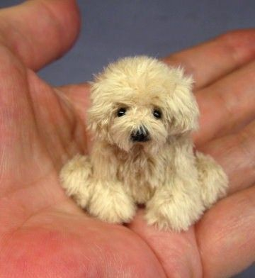 Wow! Amazing needle felt work! Looks so real! The fur on this one is amazing.