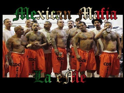 mexican mafia essay Read this essay on mexican mafia come browse our large digital warehouse of free sample essays get the knowledge you need in order to pass your classes and more.