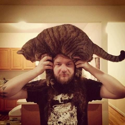 The 30 Most Majestic CatAfro's Of All Time