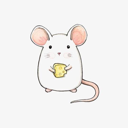 Mice Png Animal Cartoon Cartoon Mouse Cheese Hand Painted Cute Drawings Cute Animal Drawings Animal Drawings