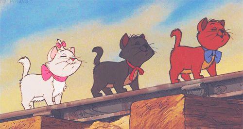 歩く子猫たち