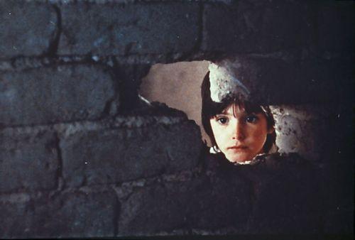 El espíritu de la colmena (Víctor Erice, 1973):