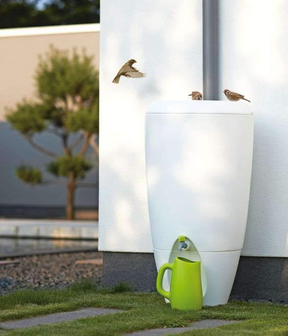 Collect Rain water and use it at another time! Perfect for watering the lawn or…