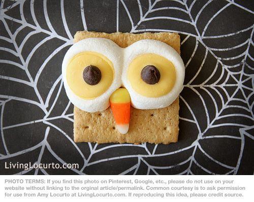 Owl S'mores Recipe by Amy Locurto at LivingLocurto.com