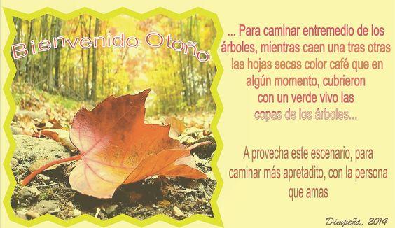 Bienvenida Otoño 2014 Dimpeña