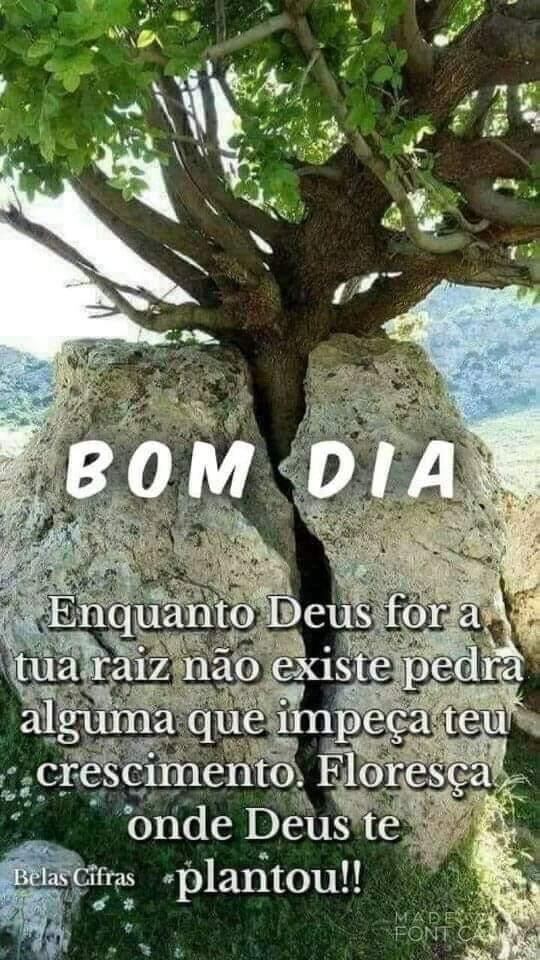 Carlao Mister Ce On Mensagens De Bom Dia Bom Dia Com Jesus