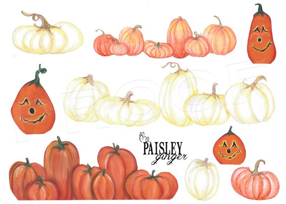 Pumpkin Variety digital clipart for by ThePaisleyGinger on Etsy, $5.00