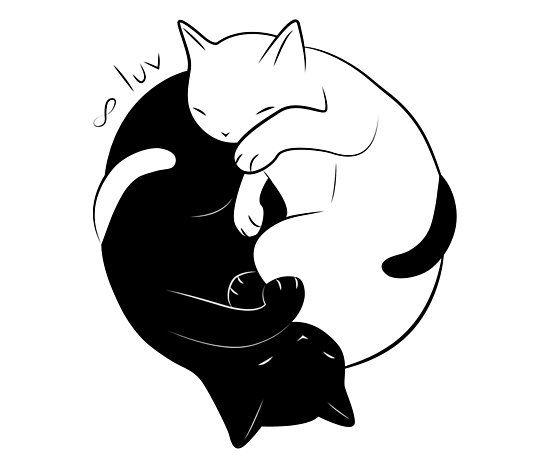 Cats Yin /& Yang Damen T-Shirt and Cat Circle Symbol Sign Fun Love Katze Katzen