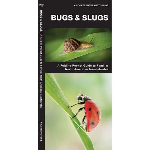 Bugs Slugs Pocket Naturalist Guide Pocket Field Guide Invertebrates Slugs Field Guide