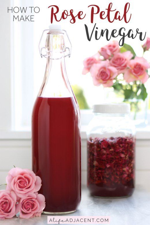 Rose Petal Vinegar For Skin Hair Ways To Use It Homemade Skin Care Diy Beauty Recipes Beauty Recipe