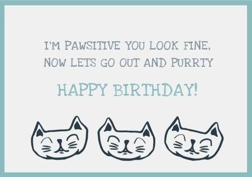 Illustration Blue And White Cat Funny Birthday Greeting Card Happy Birthday Cat Cards Happy Birthday Cat Cat Birthday Card