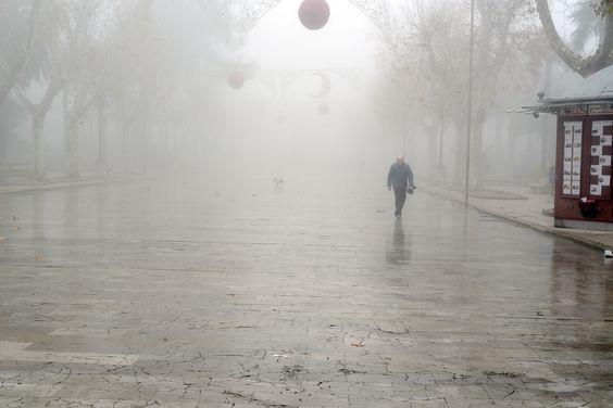 Día de niebla - null