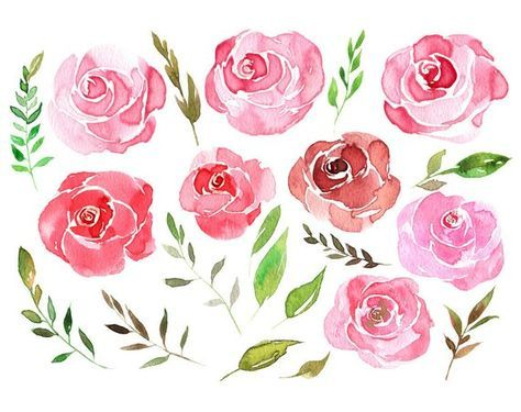 Watercolor Flower Clipart 22 Pink Red Flowers Scarlet Aquarelle