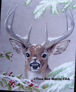 Tina Sue Norris CDA