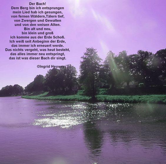 Hier gibt es Gedichte und Sprüche von mir