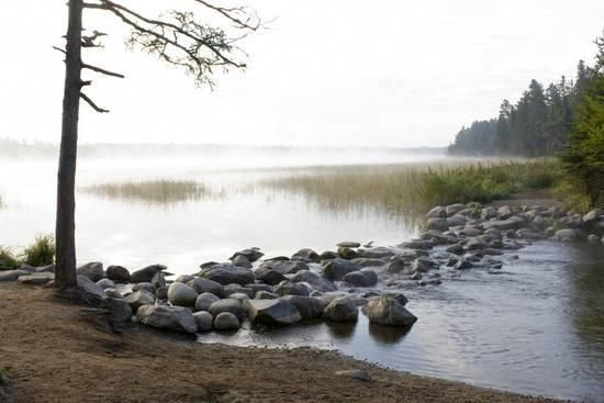Usa Minnesota Itasca State Park Mississippi Headwaters